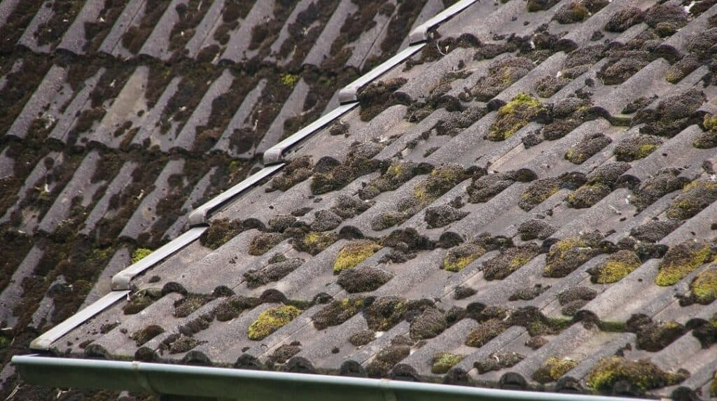 a moss-covered roof in need of replacement